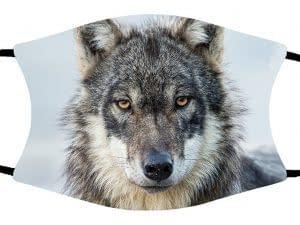 PMAwolfmask
